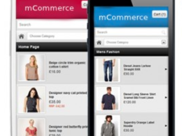 Will M-Commerce Continue its Gigantic Increase in 2014?